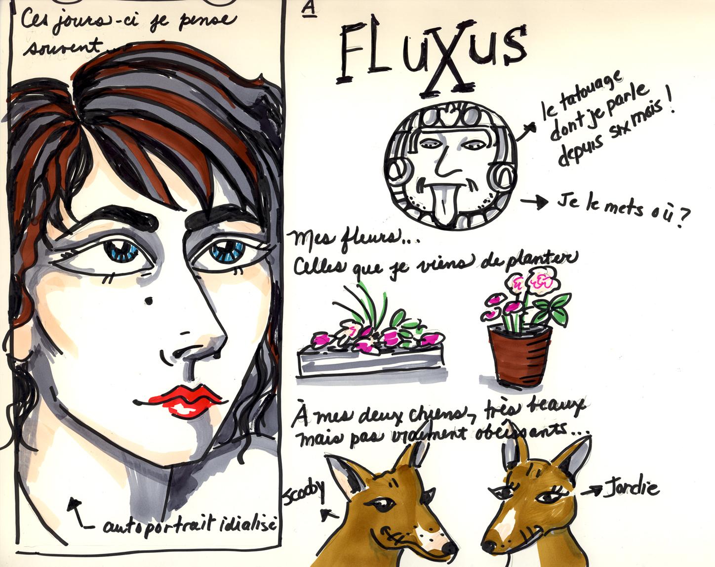 fluxusmoi2.jpg